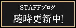 STAFFブログ随時更新中!